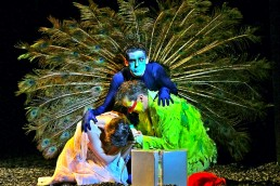 Nuno Roque - The Magic Flute - Opera - Theatre - Mozart - Sandrine Piau